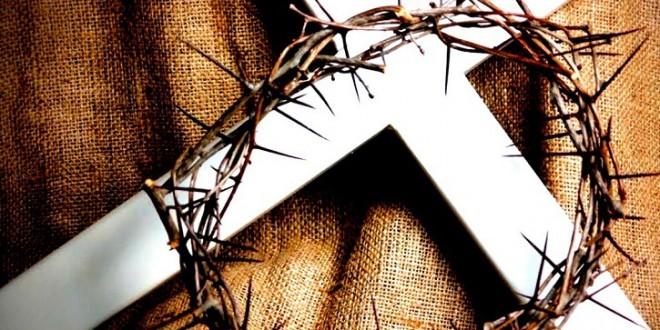 3-cruz